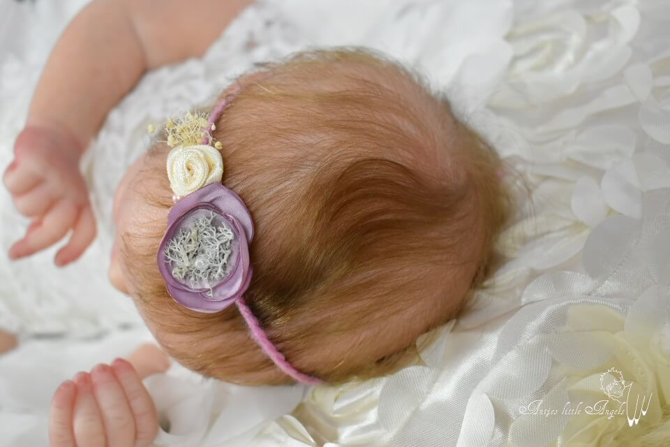 Priscilla by Bountiful Baby