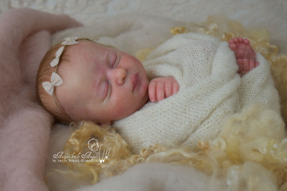 Aria by Bountiful Baby